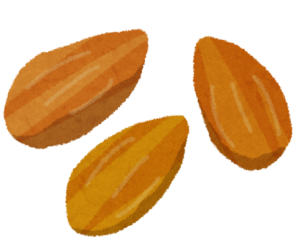 アーモンドのイラスト
