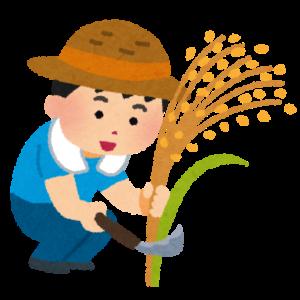 稲を収穫するイラスト
